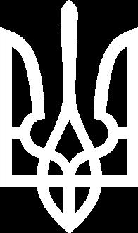 Принт Мужская футболка с символикой Украины - Moda Print