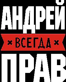 Принт Футболка дитяча Андрій завжди правий - Moda Print