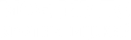 Принт Футболка жіноча Кропивницький мій Місто - Moda Print