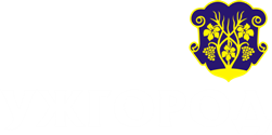 Принт Футболка дитяча з символами Ужгорода - Moda Print