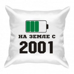 Подушка На Земле с 2001 - Moda Print